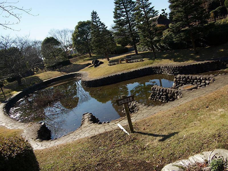 だいだらぼっちの足跡が池になっています