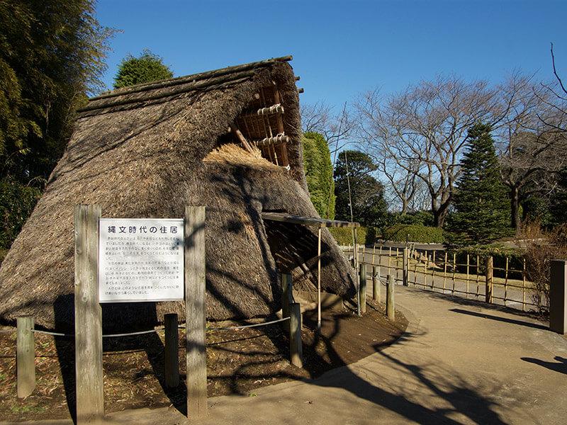 縄文時代の竪穴式住居の復元
