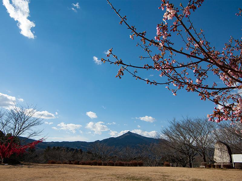 筑波山と展望台広場