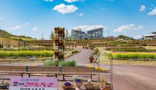 茨城県フラワーパークを年間フリーパスで楽しもう(石岡市)
