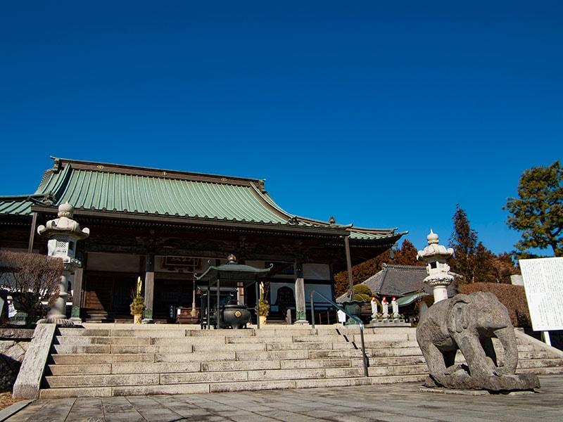 大聖寺と象の像