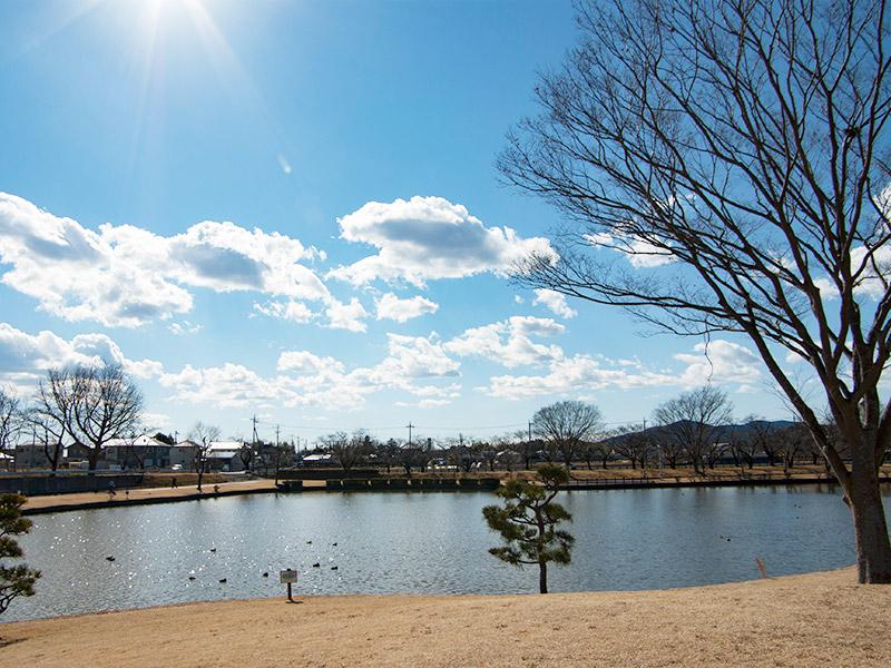 池と太陽が眩しい空