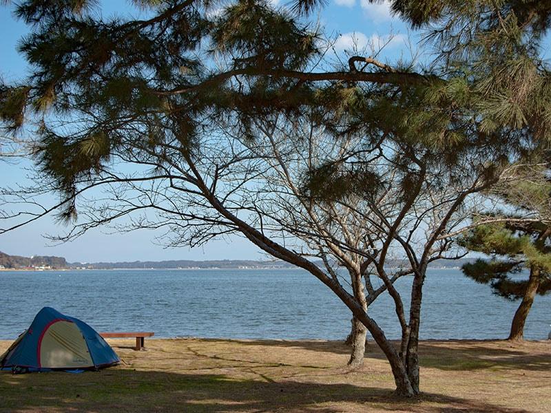 親沢公園のテント