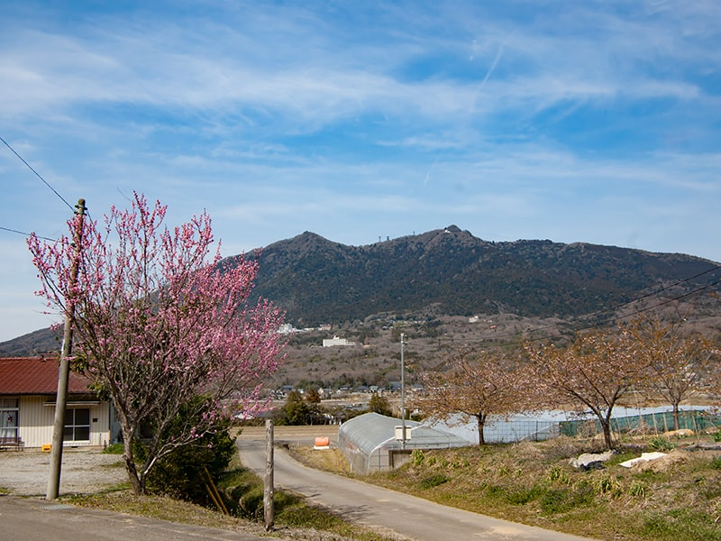 神郡から見る筑波山