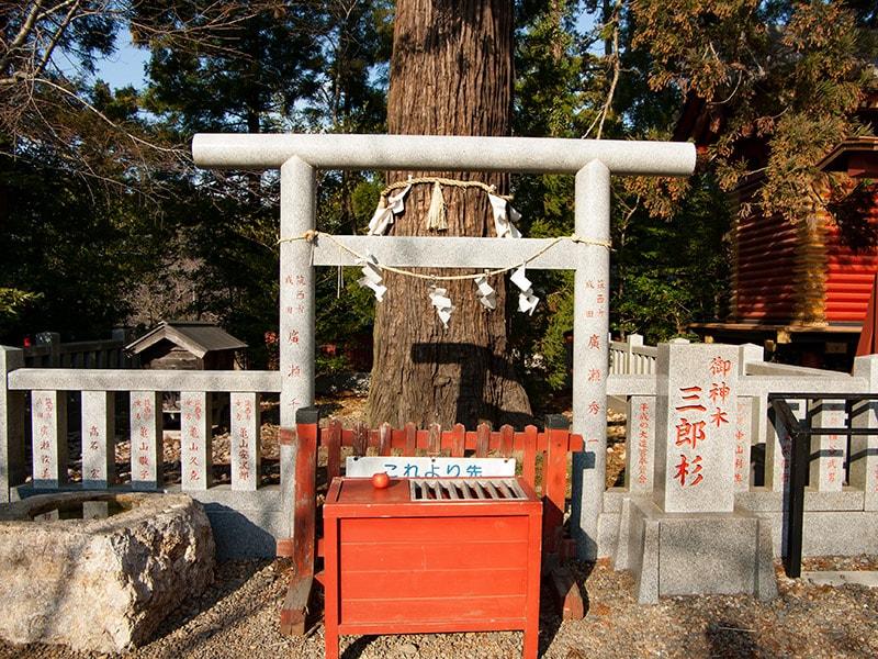 三郎杉前の賽銭箱と鳥居