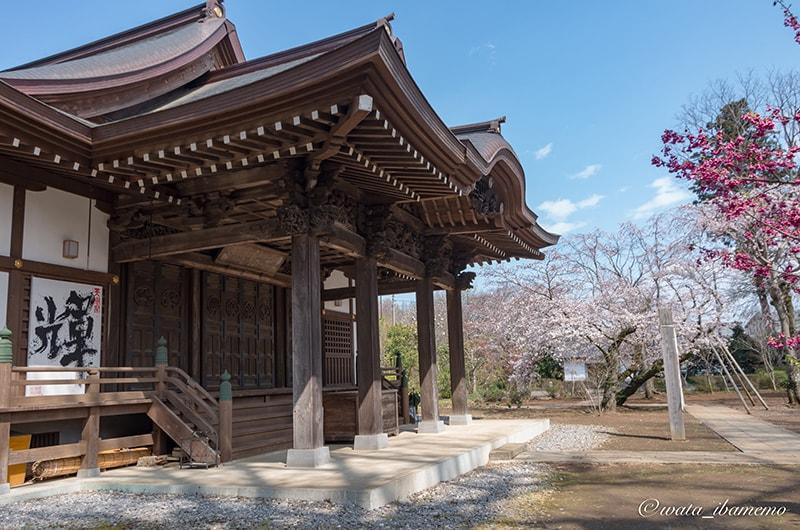 弘経寺 本堂