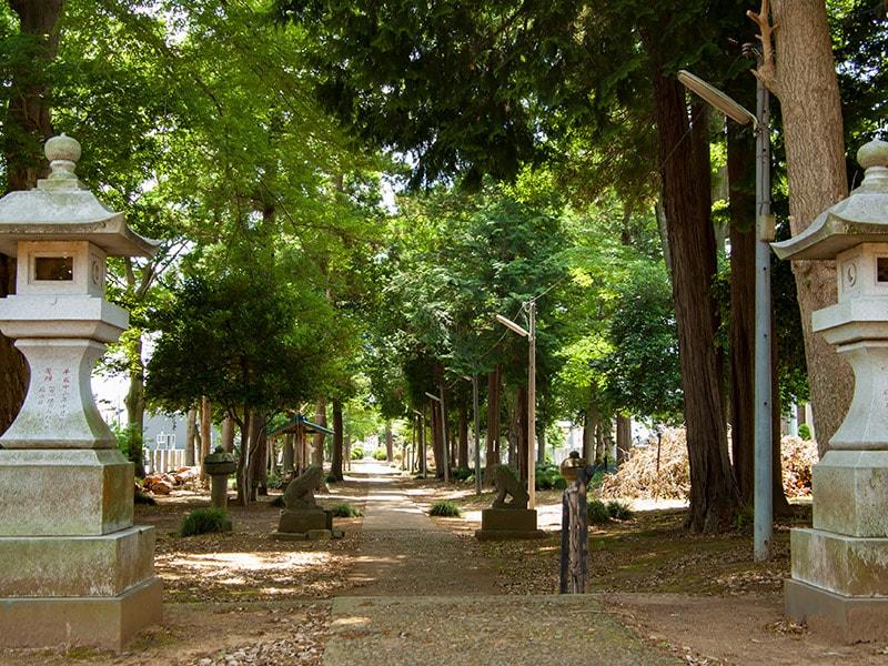 阿彌神社(中郷)の参道