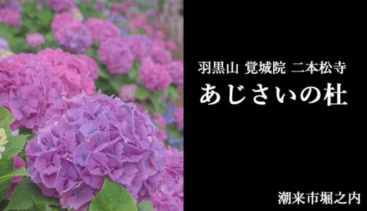羽黒山 覚城院 二本松寺|あじさいの杜の見頃・由緒・御朱印(潮来市)