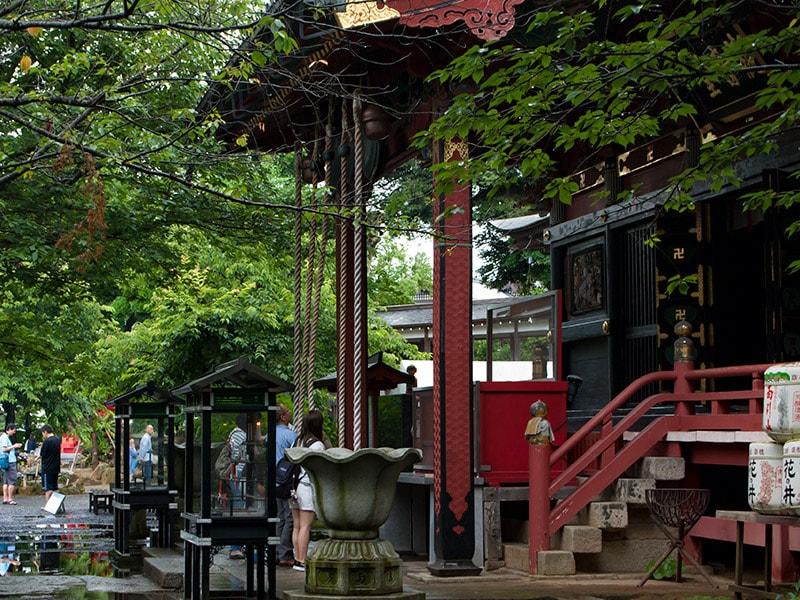 6月のお参りは雨引観音!名物のあじさいとご利益で心スッキリ♪(桜川市)