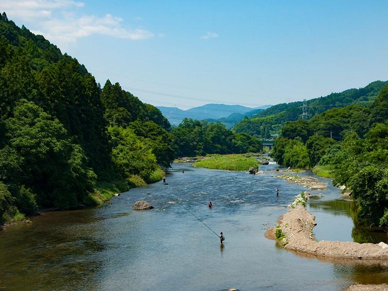 久慈川の釣り客