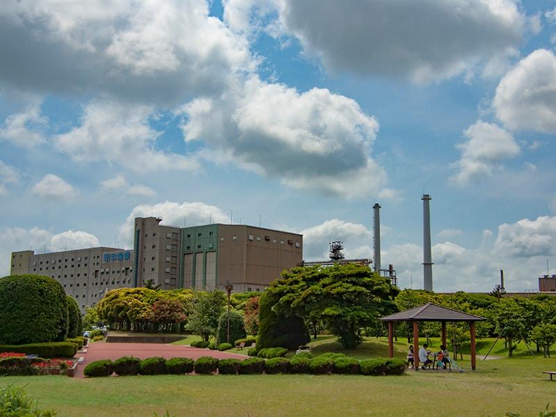 公園から見る昭和産業