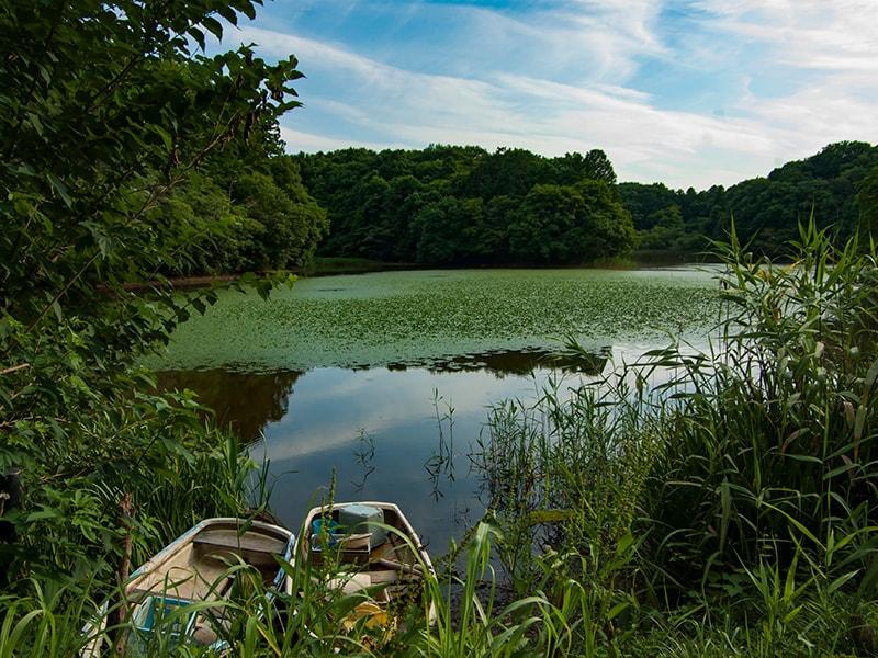 宍塚大池と調査用ボート