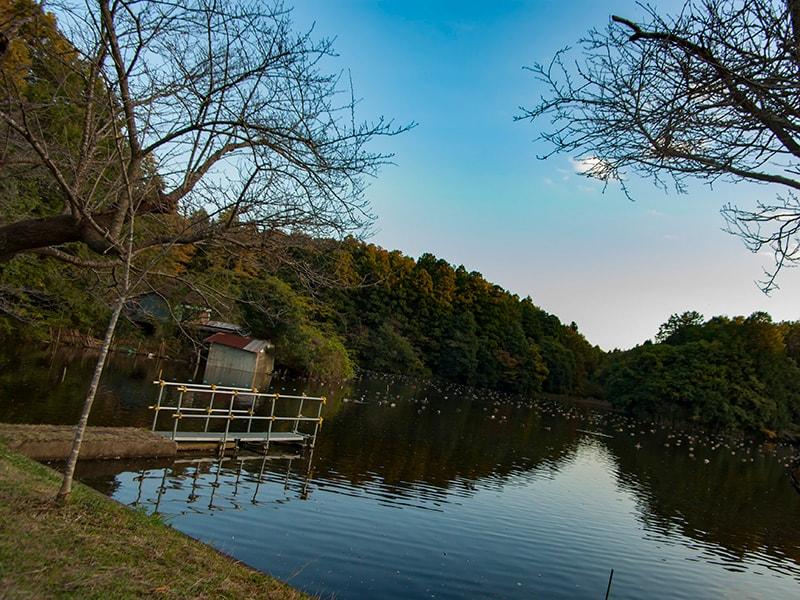 冬の宍塚大池