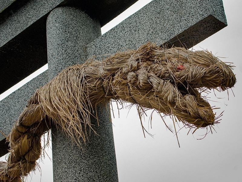 金比羅神社の鳥居にあるオロチ