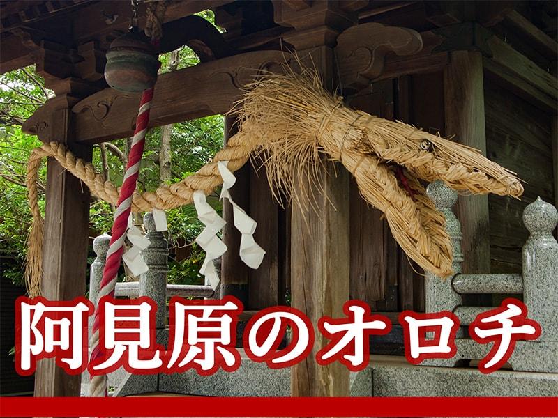 阿見町のオロチアイキャッチ