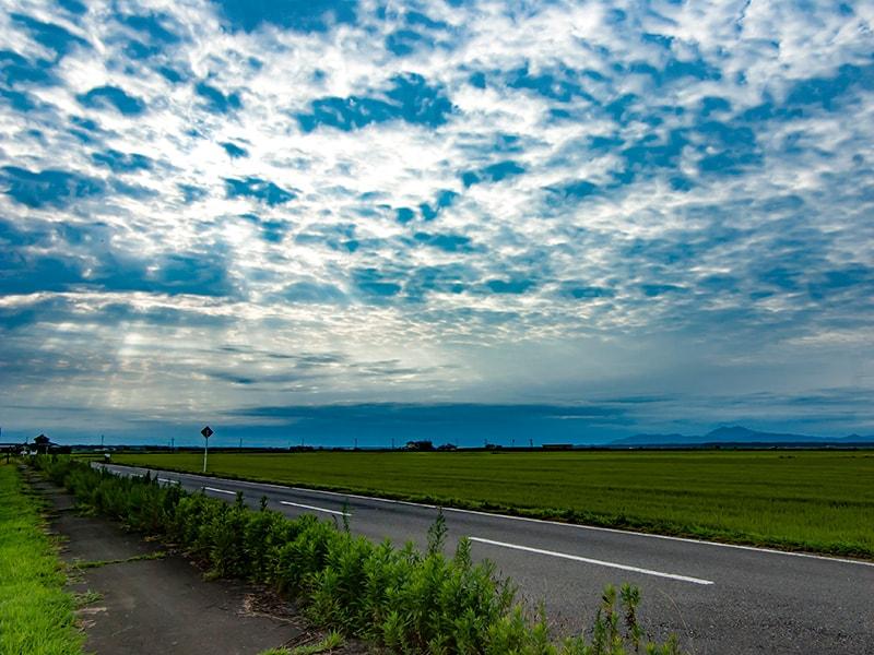 県道120号から見る筑波山