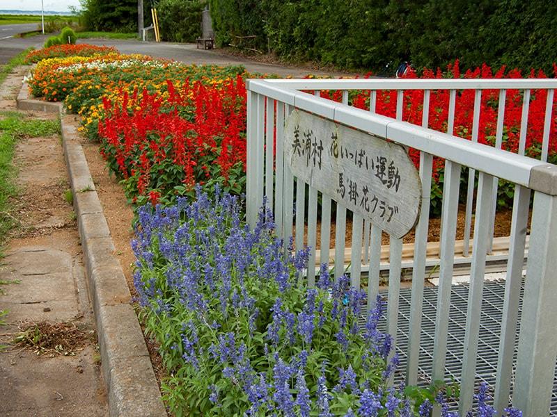 ロードパーク美浦の花壇