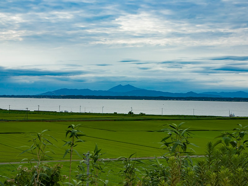 ロードパーク美浦の丘から見る筑波山と霞ヶ浦
