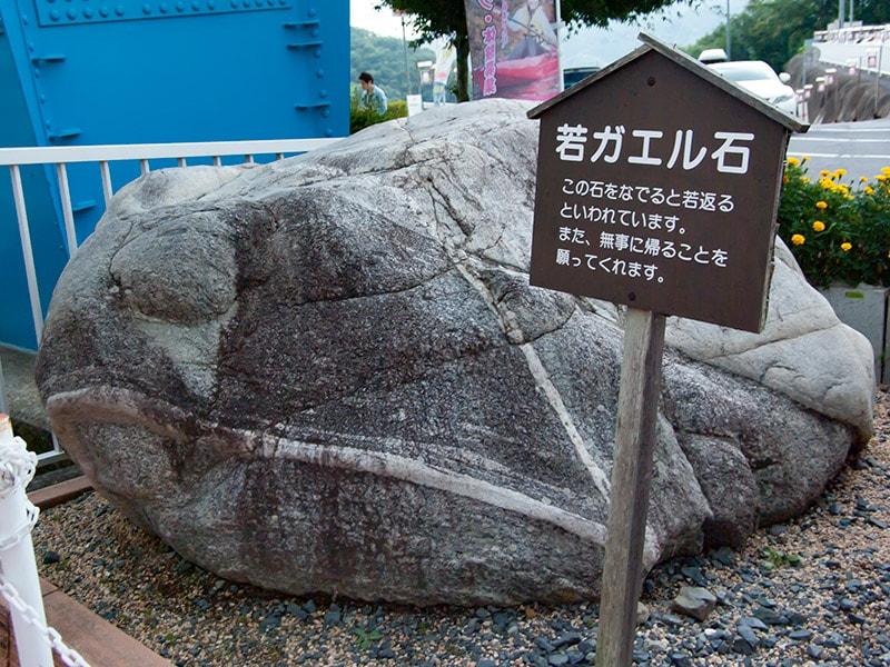 若ガエル石