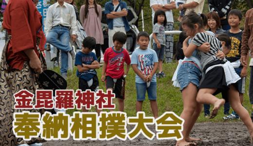 金刀比羅神社の奉納相撲大会(利根町)