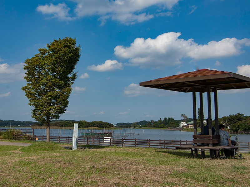 牛久沼水辺公園2