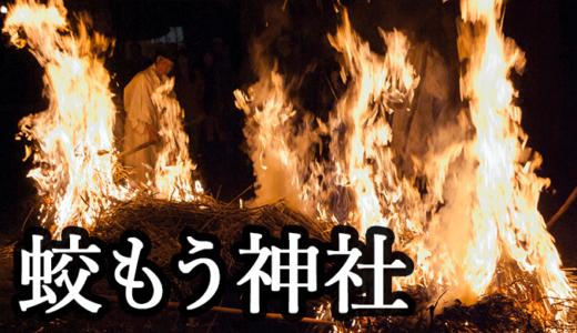 関東最古の水神様を祀る蛟蝄神社〜例大祭(利根町)