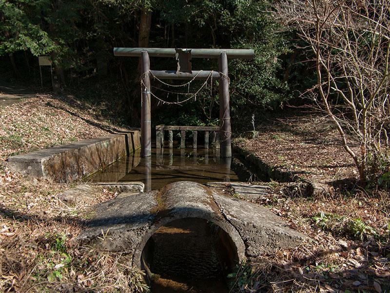 椎井池の鳥居
