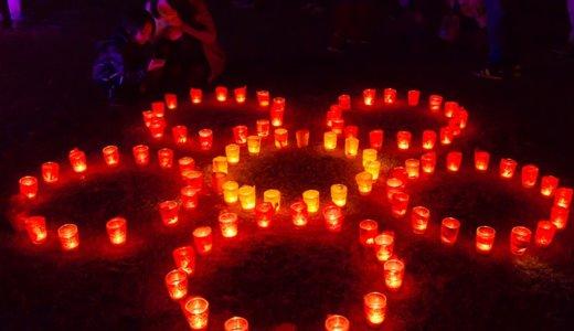 偕楽園の梅をライトアップ!夜梅祭はこんなおまつりでした(水戸市)