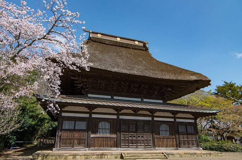 長勝寺本堂(桜)