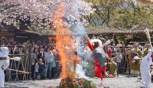 雨引観音の奇祭 マダラ鬼神祭!実際に見たらこんな感じでした(桜川市)