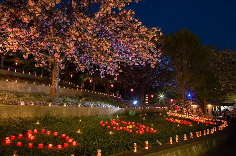 八重桜まつりのキャンドルライト2