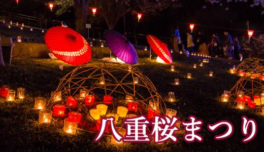 静峰ふるさと公園の八重桜まつり(那珂市)