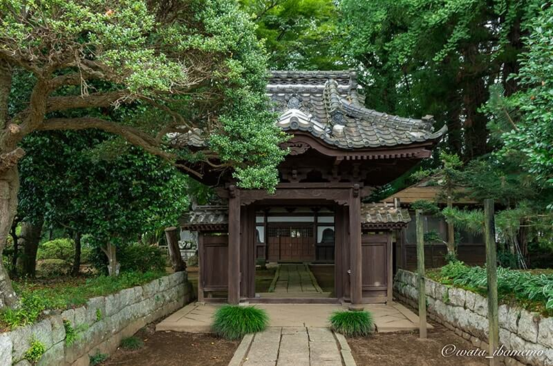 玉日姫廟の門