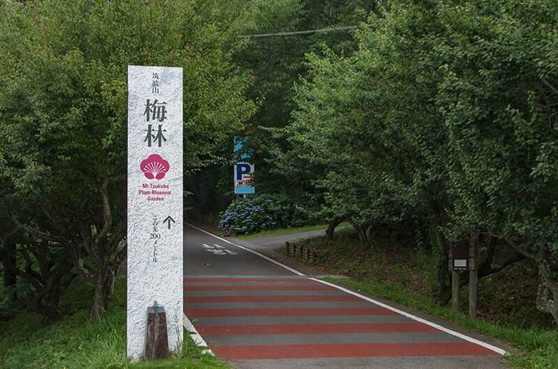 筑波山梅林入口