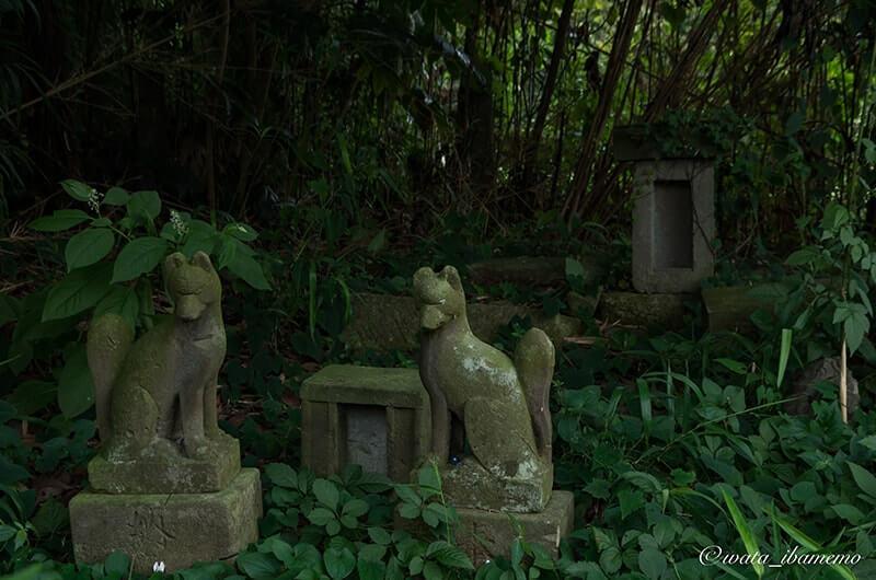 根本女化稲荷神社境内の稲荷像