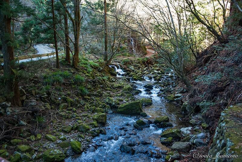 神社の前の花園川