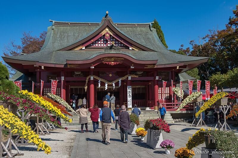 菊まつりの社殿