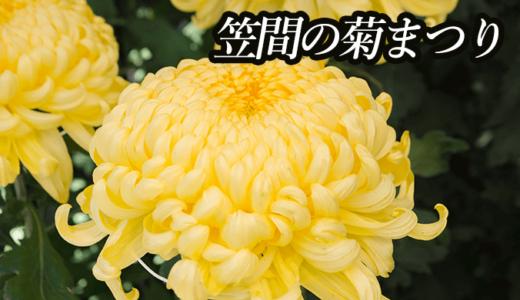 笠間の菊まつり|日本最古の菊の祭典(笠間市)
