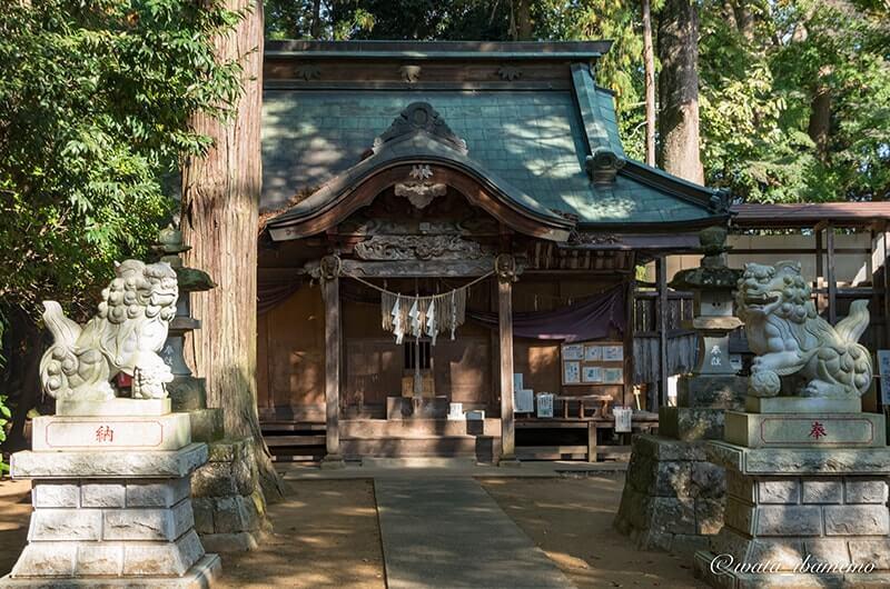 胎安神社社殿