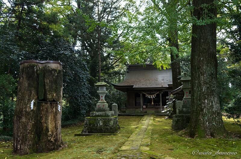 子安神社境内