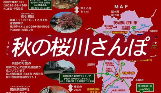 秋の桜川さんぽの紅葉と御朱印まとめ(桜川市)