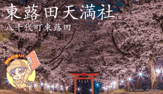 おもてなしの東蕗田天満社〜桜・御朱印〜|八千代町