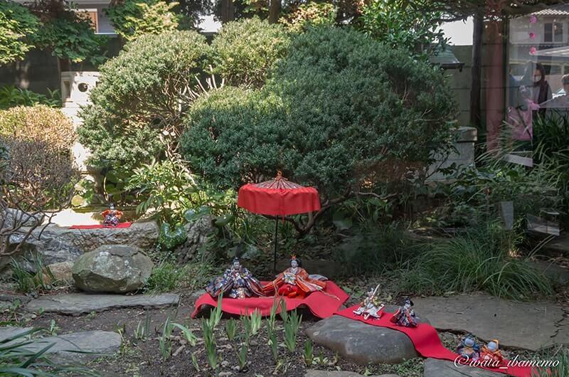 立川醤油店のお庭のひな人形