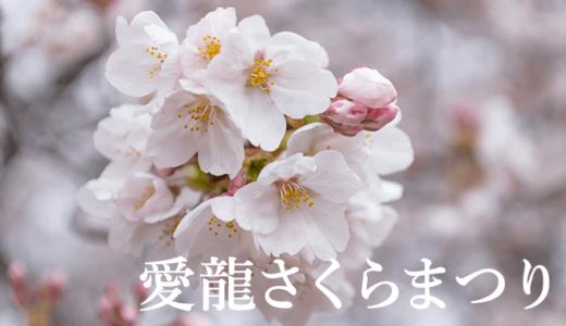 愛国学園の愛龍さくらまつり(龍ケ崎市)