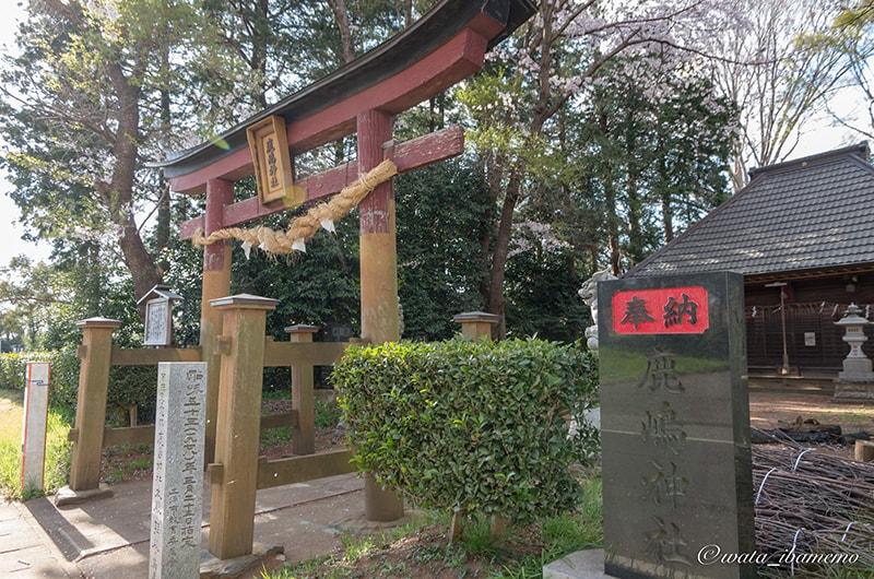 鳥居と石柱