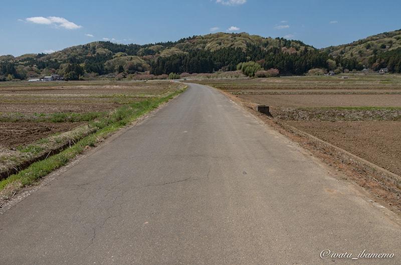 龍谷院に続く道