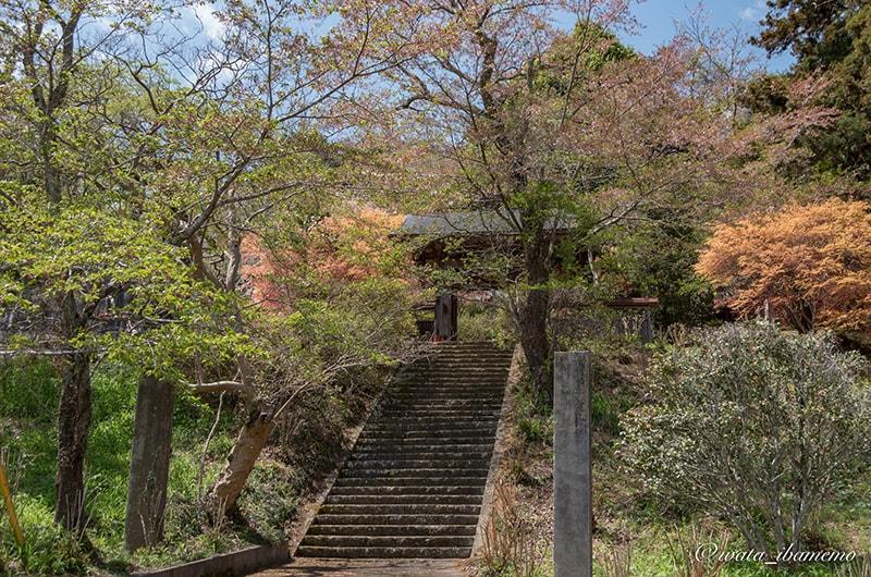 山門に続く石段
