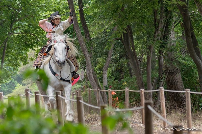 白馬に乗る競技者