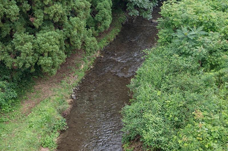 橋の上から見る鮎川