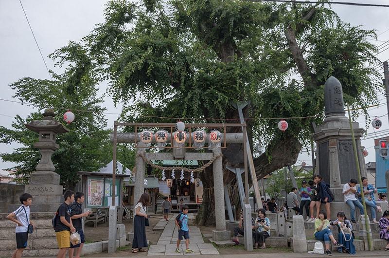 水海道祇園祭の諏訪神社